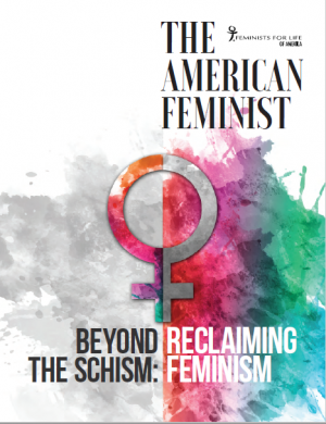 Beyond the Schism: Reclaiming Feminism Cover