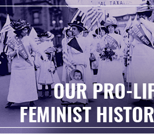 What your teachers never told you about women's history...